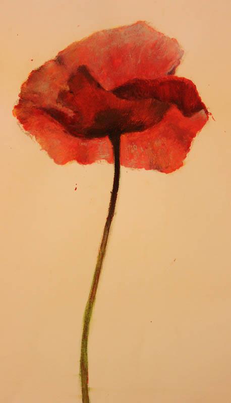 Gyori_Kinga_flower_3